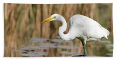Great White Egret By The River Beach Towel