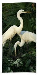Great White Egret Mates Beach Towel