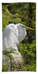 Great White Egret On Nest Beach Sheet
