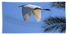 Beach Towel featuring the photograph Great White In Flight by Penny Meyers