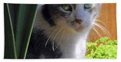 Green Eyed Cat Beach Sheet