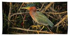 Green Heron Basking In Sunlight Beach Sheet