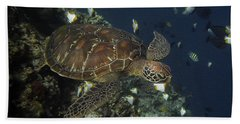Beach Towel featuring the photograph Hawksbill Turtle by Sergey Lukashin