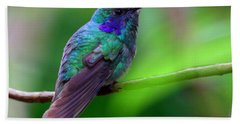Green Violet Ear Hummingbird Beach Sheet by Myrna Bradshaw