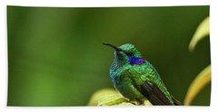 Beach Towel featuring the photograph Green Violetear Hummingbird by Heiko Koehrer-Wagner