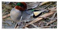 Green-winged Teal Beach Towel by Debra Martz