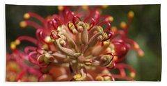 Grevillea Superb Australian Flora Beach Sheet by Joy Watson