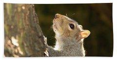 Beach Towel featuring the digital art Grey Squirrel by Ron Harpham