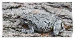 Beach Towel featuring the photograph Cope's Gray Tree Frog by Judy Whitton