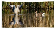 Greylag Goose Family Beach Sheet