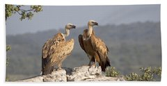 Griffon Vulture Pair Extremadura Spain Beach Towel
