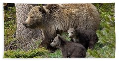 Grizzly Bear With Cubs Beach Towel by Jack Bell