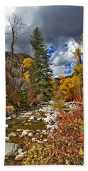 Beach Towel featuring the photograph Grizzly Creek Vertical by Jeremy Rhoades