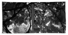 Beach Towel featuring the photograph Gropius Vine - Black And White by Joseph Skompski