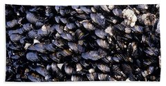 Group Of Mussels Close Up Beach Towel
