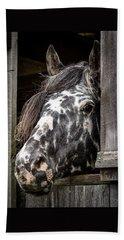 Guard Horse-what's The Password? Beach Sheet