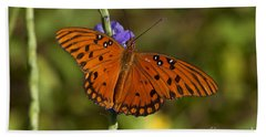 Beach Towel featuring the photograph Gulf Fritillary Butterfly by Meg Rousher