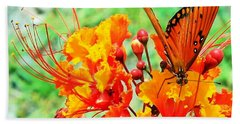 Gulf Fritillary Butterfly On Pride Of Barbados Beach Towel