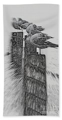 Gulls In Pencil Effect Beach Sheet by Linsey Williams