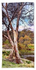 Gum Tree By The River Beach Sheet by Wallaroo Images