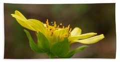 Beach Towel featuring the photograph Hairy Leafcup by Paul Rebmann
