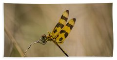 Halloween Pennant Dragonfly Beach Sheet