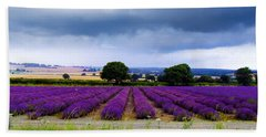 Hampshire Lavender Field Beach Sheet