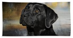 Handsome Black Lab Beach Sheet by Eleanor Abramson