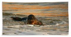 Beach Towel featuring the photograph La Jolla Seal Sunset by John F Tsumas