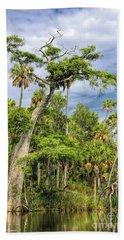 Hatrack Cypress Beach Sheet