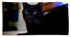 Havana Brown Cat Beach Towel