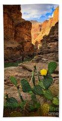 Havasu Cactus Beach Towel