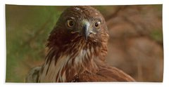 Hawk Close Encounter Beach Towel