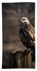 Hawk On A Post Beach Towel by Randy Hall