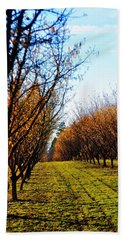 Hazelnut Orchard 21578 Beach Towel