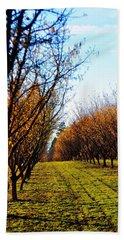 Hazelnut Orchard 21578 Beach Sheet