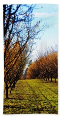 Hazelnut Orchard 21578 Beach Towel