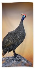Helmeted Guinea-fowl Perched On A Rock Beach Towel