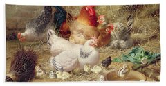 Hens Roosting With Their Chickens Beach Sheet by Eugene Remy Maes