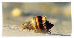 Hermit Crab  Beach Sheet by Debra Forand