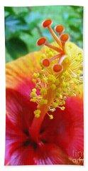 Hibiscus Antennae Beach Towel