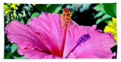 Hibiscus Beach Sheet