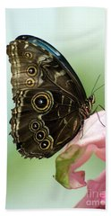 Beach Towel featuring the photograph Hidden Beauty Of The Butterfly by Debbie Green
