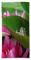 Hiding On The Lily Pad No.2 Beach Sheet by Janice Adomeit