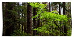 Olympic National Park Beach Towels
