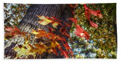 Hints Of Fall Beach Towel by Linda Unger