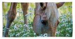 Horse And Daisies Beach Sheet