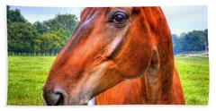 Horse Closeup Beach Towel