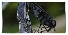 Beach Sheet featuring the photograph Horse Fly by DigiArt Diaries by Vicky B Fuller