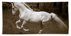 Beach Towel featuring the photograph Horsepower D5779 by Wes and Dotty Weber